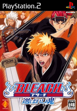 Cover Bleach Erabareshi Tamashii.jpg